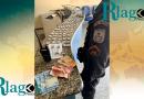 Políciais dos GAT prende dois suspeitos do tráfico de drogas no bairro Vila do Ar em Cabo Frio